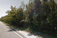 Immagine n4 - Terreno industriale edificabile di 28.460 mq - Asta 2814