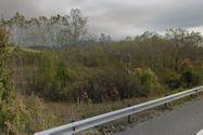 Immagine n5 - Terreno industriale edificabile di 28.460 mq - Asta 2814