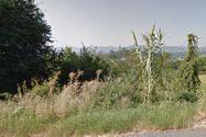 Immagine n1 - Terreni boschivi di 824.972 mq - Asta 2815