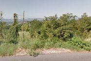 Immagine n2 - Terreni boschivi di 824.972 mq - Asta 2815