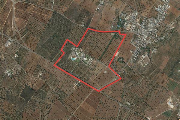 Immagine n7 - Planimetry - Aerial view - Asta 2910