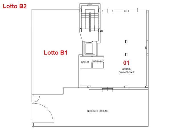 Immagine n0 - Planimetria - Piano terra - Asta 2923