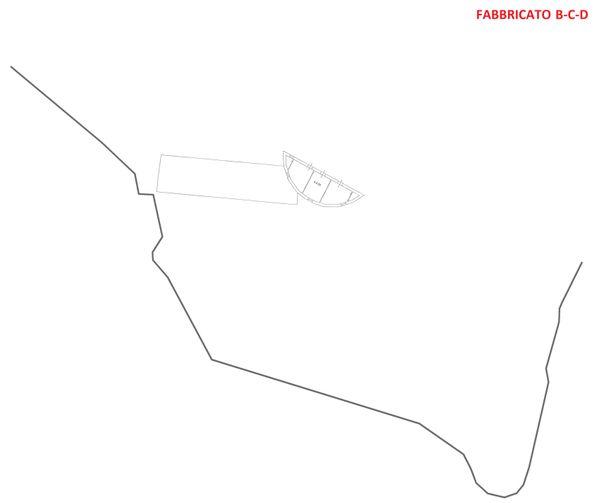Immagine n6 - Planimetria - Piano primo - Fabbricato B-C-D - Asta 3324