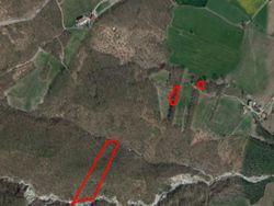 Appezzamenti di terreni boschivi - Lotto 3445 (Asta 3445)