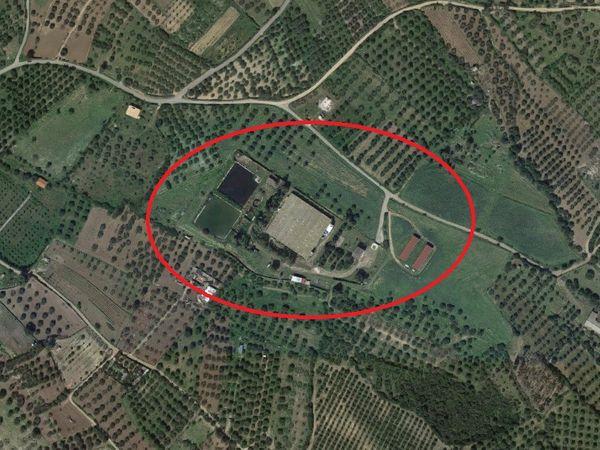 Immagine n0 - Planimetria - Vista aerea - Asta 3495