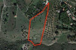 Terreno in comparto agricolo - Lotto 3535 (Asta 3535)