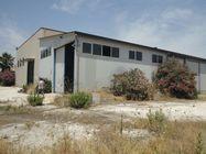 Immagine n3 - Capannone industriale con area di pertinenza - Asta 3560