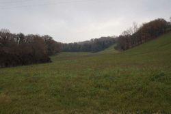 Terreno agricolo di 115.710 mq - Lotto 3804 (Asta 3804)