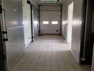 Immagine n8 - Opificio industriale per trasformazione carni - Asta 3834
