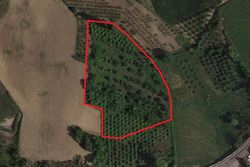 Farmland - Lot 3863 (Auction 3863)