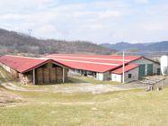 Immagine n0 - Complesso rurale con fabbricati e terreni agricoli - Asta 405