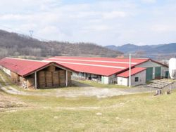 Rural complex with buildings and farmland - Lote 405 (Subasta 405)