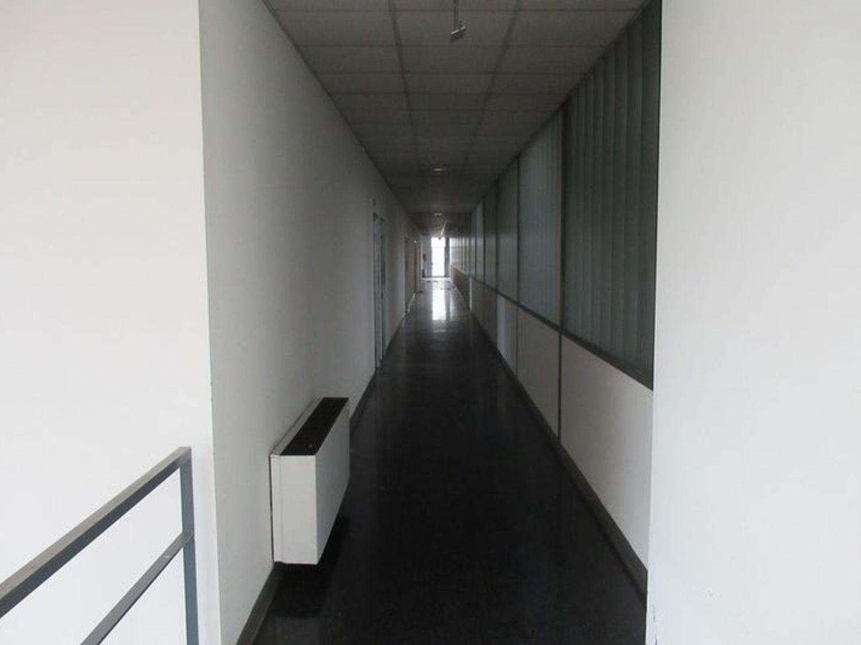 Immagine n. 10 - #4065 Capannone artigianale con uffici