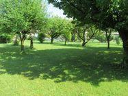 Immagine n1 - Casa indipendente con ampio terreno - Asta 4202