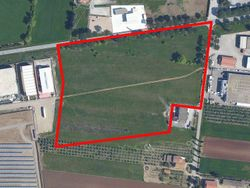Building land for industrial activities - Lote 423 (Subasta 423)