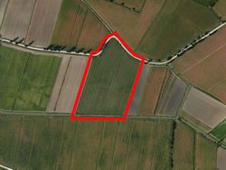 Farmland - Lot 442 (Auction 442)