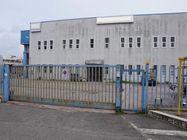 Immagine n0 - Capannone con palazzina uffici e area annessa - Asta 4434