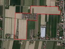 Poultry farm with land and housing - Lot 4466 (Auction 4466)