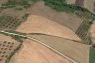 Immagine n3 - Edificio commerciale e quota di terreno agricolo - Asta 4477