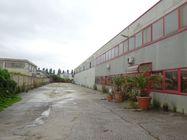 Immagine n1 - Edificio produttivo con area vendita e abitazione - Asta 4594