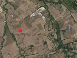 Agricultural land of   .    sqm - Lot 4599 (Auction 4599)