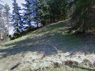 Immagine n0 - Terreno edificabile con area di rispetto ambientale - Asta 477