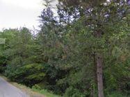 Immagine n3 - Terreno edificabile con area di rispetto ambientale - Asta 477