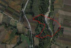 Terreno agricolo a bosco di 58.280 mq
