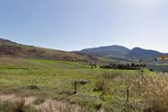Immagine n7 - Agricultural land of 81.189 square meters - Asta 4781