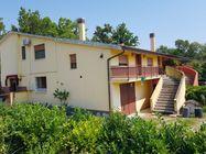 Immagine n0 - Appartamento con autorimessa e giardino comune - Asta 4927