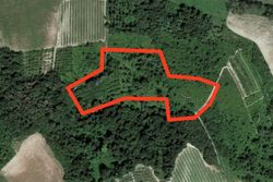 Agricultural plot in a hilly area - Lote 4948 (Subasta 4948)
