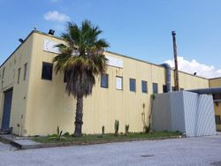 Capannone industriale con area uffici (Part. 309)