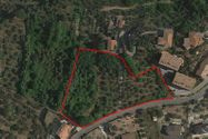 Immagine n0 - Share 1/16 of agricultural land sup 7820 sqm - Asta 5090