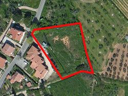 sqm land  agricultural and building  - Lote 529 (Subasta 529)