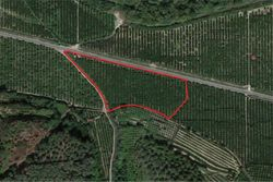 Agricultural land citrus grove - Lot 5369 (Auction 5369)