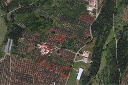Terreno agricolo con fabbricato rurale - Lotto 5433 (Asta 5433)