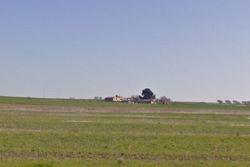Porzione di casa al piano terra - Lotto 5546 (Asta 5546)
