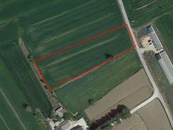 Quota di 2/3 di terreno agricolo di 4.505 mq - Lotto 5835 (Asta 5835)
