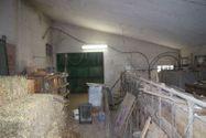 Immagine n5 - Porzione di tre fabbricati rurali - Asta 598
