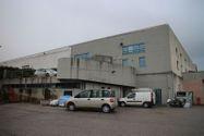 Immagine n0 - Capannone con uffici e impianto fotovoltaico - Asta 600