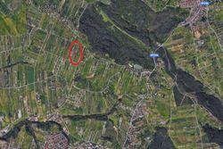QUOTA ½ di n. 2 terreni agricoli - Lotto 6295 (Asta 6295)