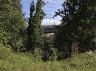Immagine n3 - Terreno boschivo in zona produttiva - Asta 636