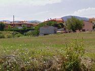 Immagine n3 - Aree verdi e carrabili in complesso residenziale - Asta 638