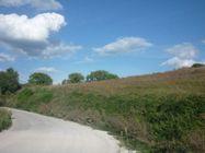 Immagine n1 - Terreno di 10206 mq per interventi pubblici - Asta 639