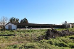 Farm buildings with mixed soils - Lote 6445 (Subasta 6445)