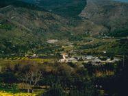 Immagine n0 - Terreno di 18.139 mq - Asta 6731