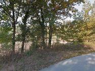 Immagine n2 - Terreno agricolo di 1.137 mq - Asta 6768