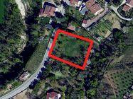 Immagine n0 - Quota 1/2 di terreno edificabile - Asta 684