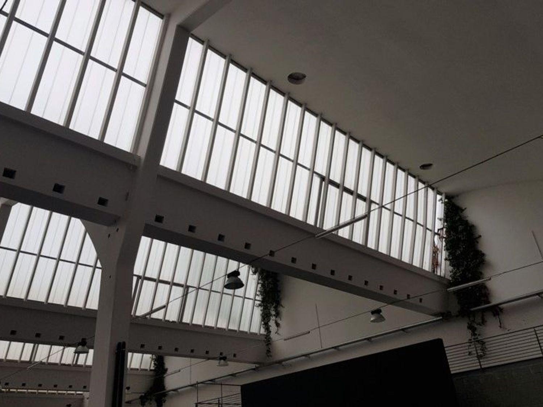 Immagine n. 7 - #7003 Ampi capannoni in complesso commerciale produttivo