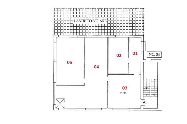 Immagine n0 - Planimetria - Piano terra - Asta 7012